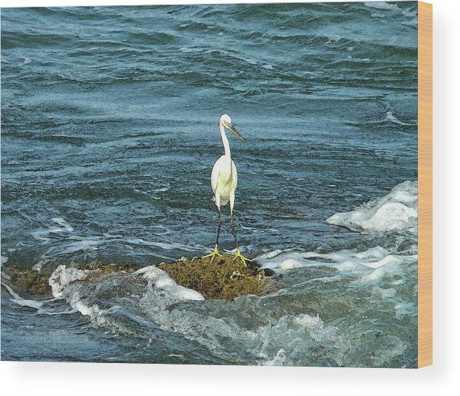 Egret Wood Print featuring the digital art Standing Alone by Sandeep Gangadharan