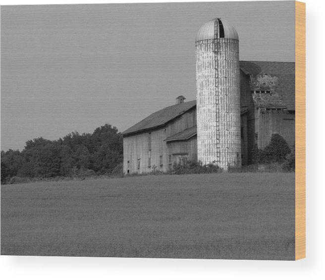 Barn Wood Print featuring the photograph Still Here by Rhonda Barrett