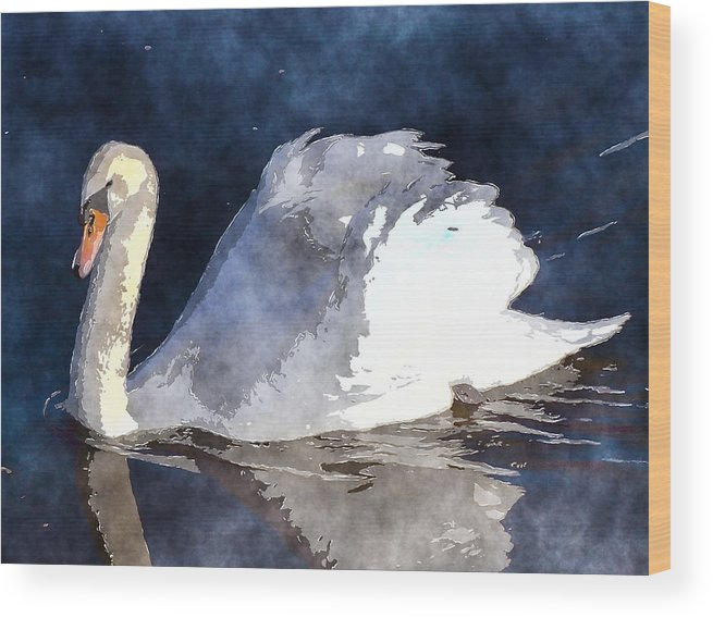 Swan Wood Print featuring the photograph Swan by David G Paul