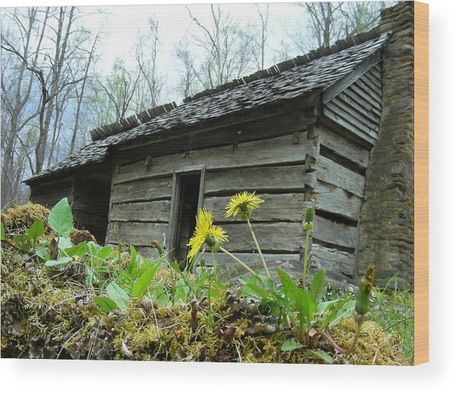 Tennessee Wood Print featuring the photograph Tennessee homestead by Linda Russell