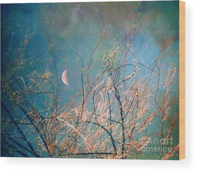 Moon Wood Print featuring the photograph The Messy House of the Moon by Tara Turner