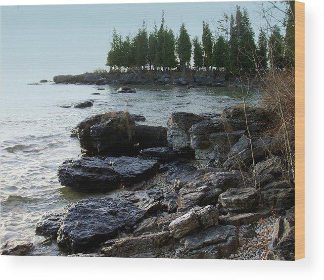 Washington Island Wood Print featuring the photograph Washington Island Shore 1 by Anita Burgermeister
