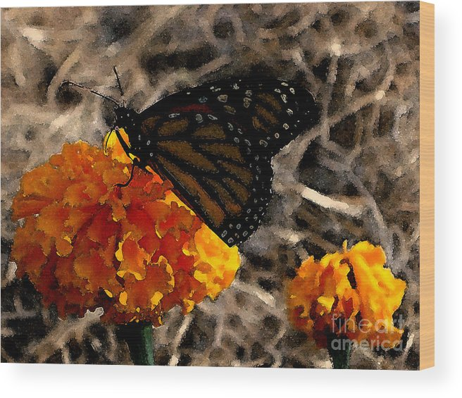 Monarch Wood Print featuring the photograph Watercolor Monarch by PJ Cloud