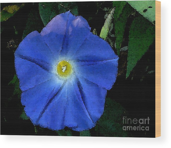Watercolor Wood Print featuring the photograph Watercolor Morning Glory by PJ Cloud