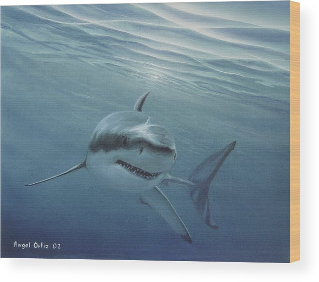 Shark Wood Print featuring the painting White Shark by Angel Ortiz