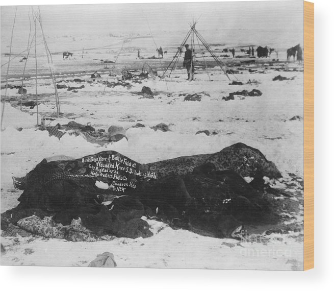 People Wood Print featuring the photograph Battlefield At Wounded Knee 1890 by Bettmann
