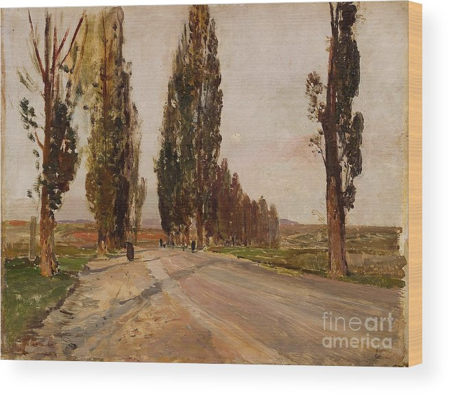 Painted Image Wood Print featuring the drawing Boulevard Of Poplars Near Plankenberg by Heritage Images