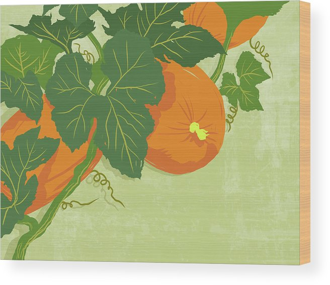 Part Of A Series Wood Print featuring the digital art Graphic Illustration Of Pumpkins by Don Bishop