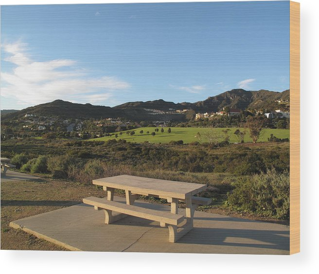 Tranquility Wood Print featuring the photograph Park Bench In Malibu by Marianna Sulic