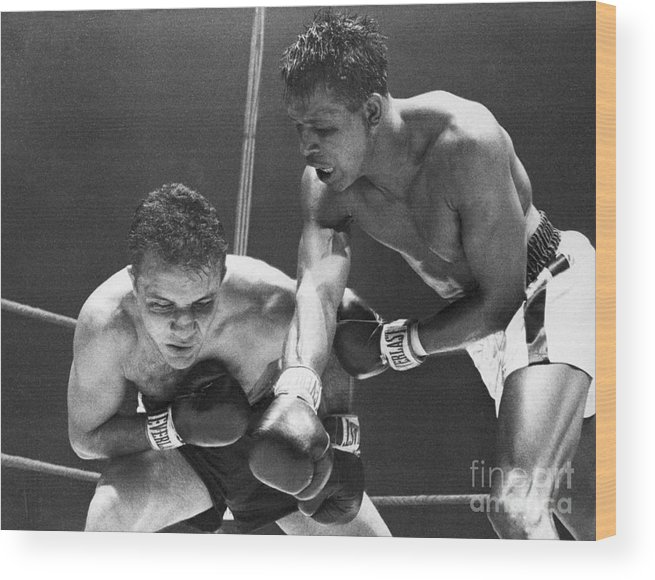 Conspiracy Wood Print featuring the photograph Sugar Ray Robinson Fighting Jake by Bettmann