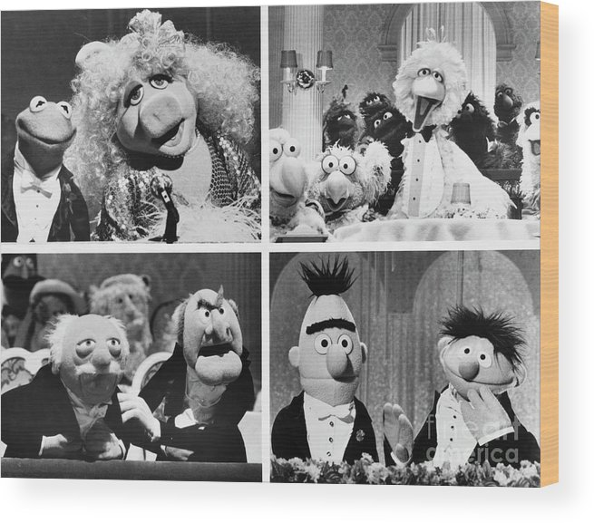 1980-1989 Wood Print featuring the photograph Various Muppets Scenes by Bettmann