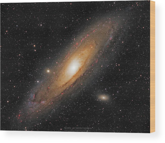Andromeda Galaxy Wood Print featuring the photograph Andromeda Galaxy by Prabhu Astrophotography