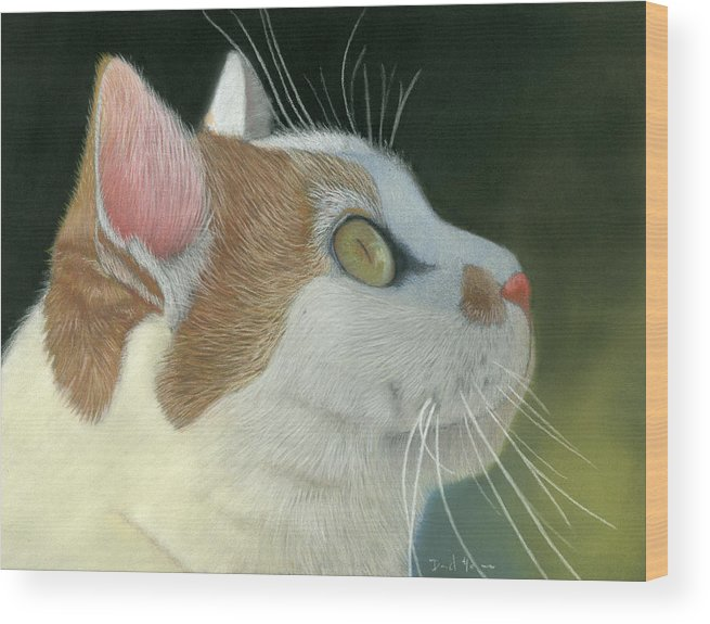 Cat Wood Print featuring the pastel Cat Portrait Pastel Painting by Dave Nevue