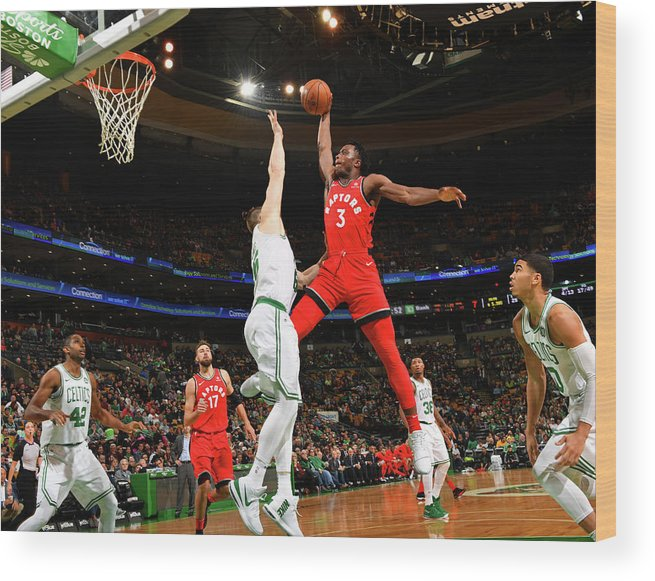 Nba Pro Basketball Wood Print featuring the photograph Og Anunoby by Jesse D. Garrabrant