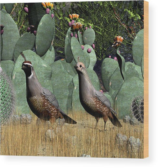 Quail Wood Print featuring the digital art Desert Quail by Walter Colvin