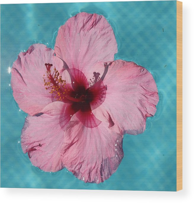 Foto Wood Print featuring the photograph Flower 2 by Roger Cummiskey