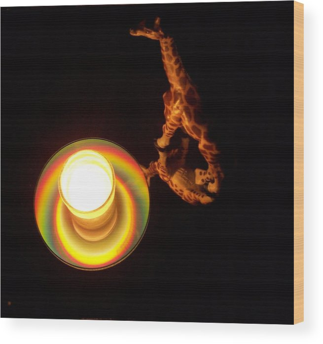 Giraffe Wood Print featuring the photograph Illuminated Objects by Michelle Miron-Rebbe