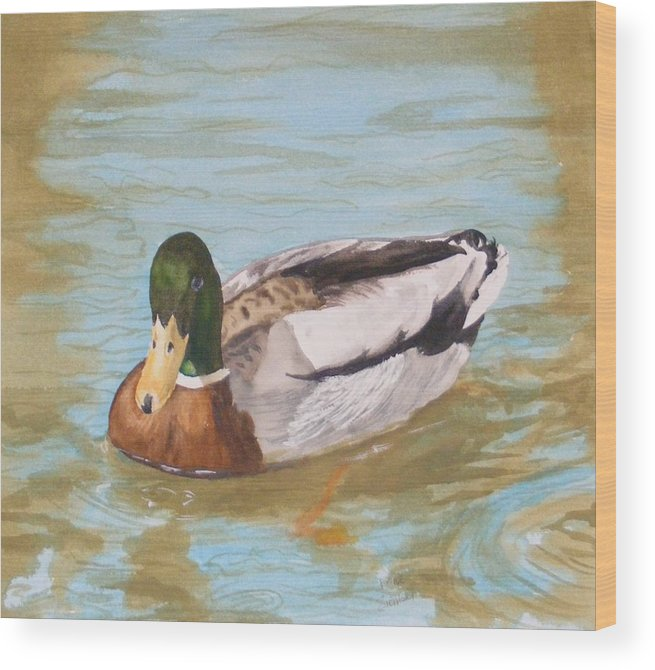 Duck Mallard Water Wood Print featuring the painting Mallard Drake by Diane Ziemski