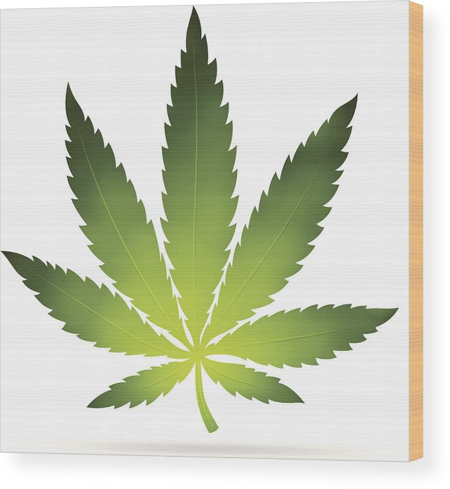 White Background Wood Print featuring the digital art Cannabis Leaf by Filo