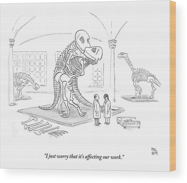 Scientists Wood Print featuring the drawing A Male And Female Paleontologist by Paul Noth