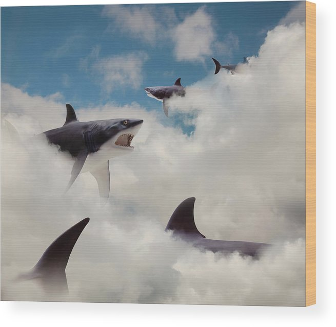 Risk Wood Print featuring the photograph Sharks Floating In Clouds by John M Lund Photography Inc