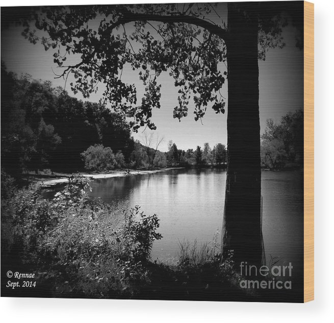 Waterscape Wood Print featuring the photograph The Calm by Rennae Christman
