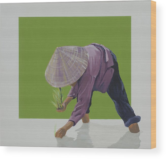 Asian Woman Planting Rice. Wood Print featuring the painting Planting Season by Marston A Jaquis