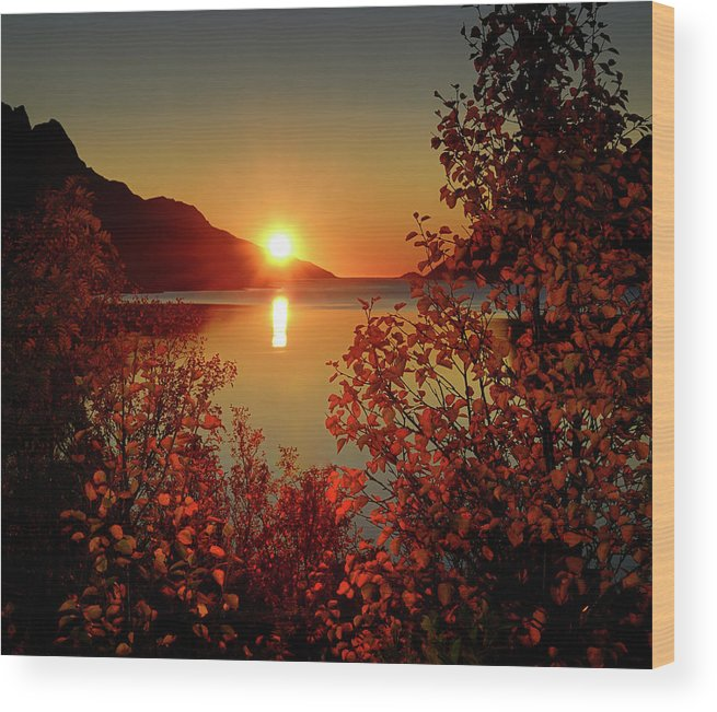 Tranquility Wood Print featuring the photograph Sunset In Ersfjordbotn by John Hemmingsen
