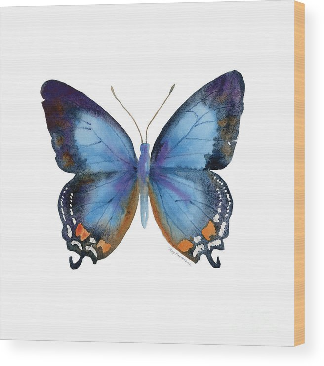 Imperial Blue Butterfly Wood Print featuring the painting 80 Imperial Blue Butterfly by Amy Kirkpatrick