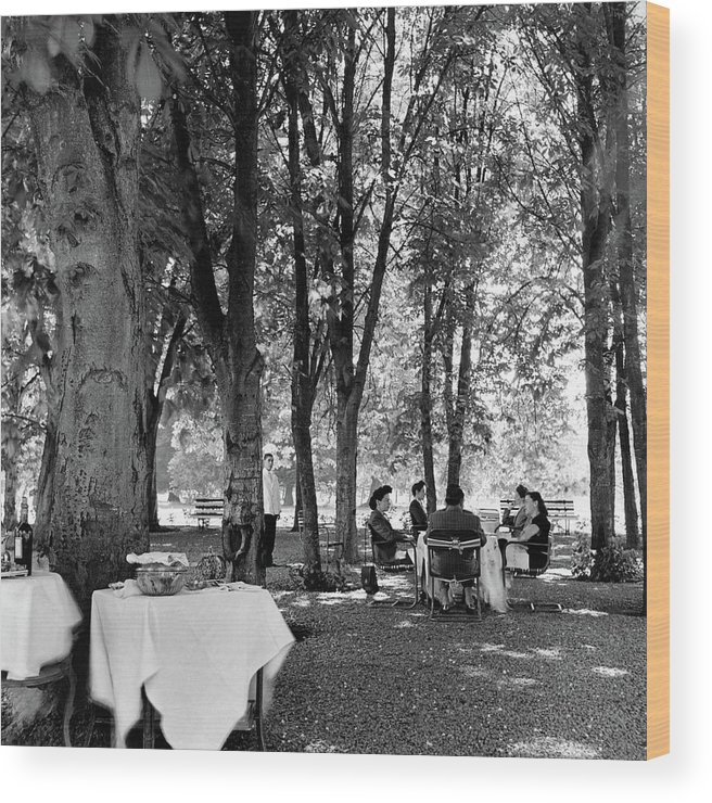 Food Wood Print featuring the photograph A Group Of People Eating Lunch Under Trees by Luis Lemus