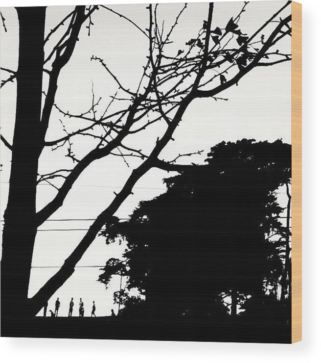 Minimalove Wood Print featuring the photograph Across the Way by Courtney Haile