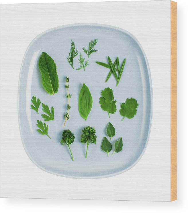 White Background Wood Print featuring the photograph Assorted Fresh Herb Leaves On Blue Plate by Creative Crop