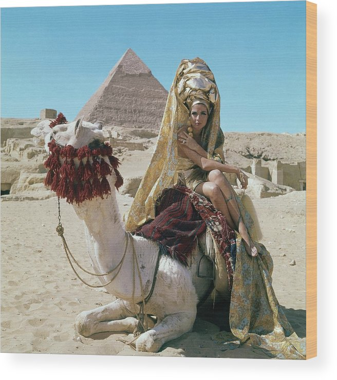 Fashion Wood Print featuring the photograph Baronne Van Zuylen On A Camel by Leombruno-Bodi