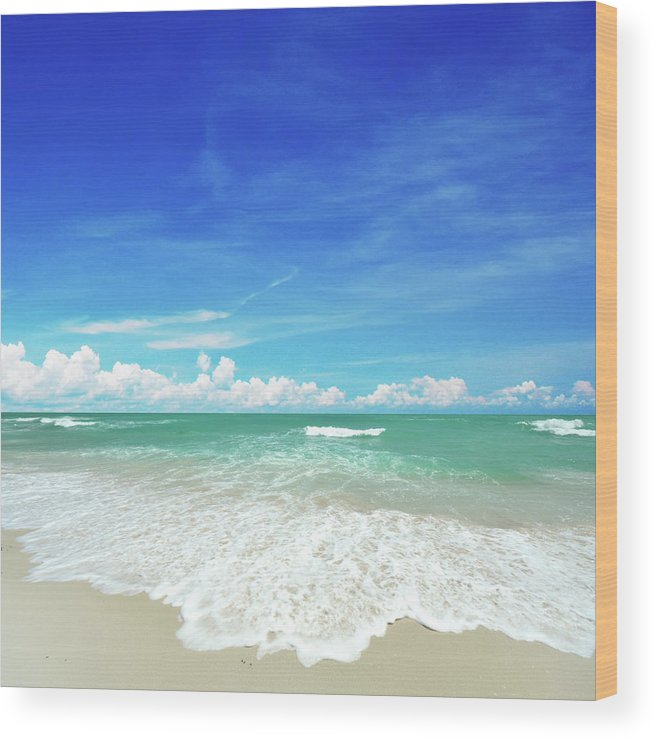 Tranquility Wood Print featuring the photograph Beach by Photo By Arztsamui