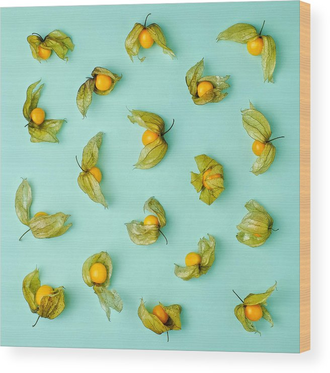 Winter Cherry Wood Print featuring the photograph Cape Gooseberries Physalis, Winter by Juj Winn