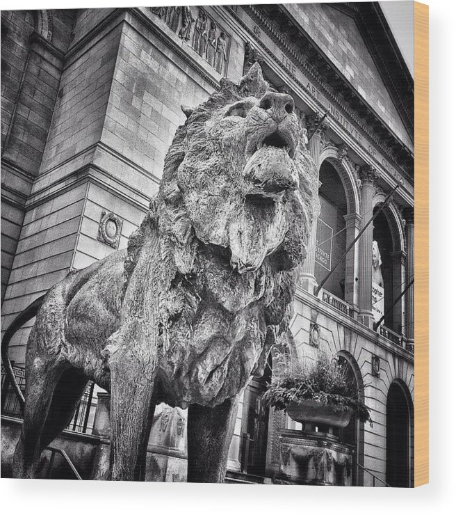America Wood Print featuring the photograph Lion Statue at Art Institute of Chicago by Paul Velgos