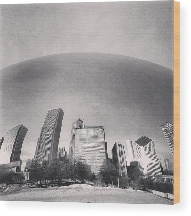 America Wood Print featuring the photograph Cloud Gate Chicago Skyline Reflection by Paul Velgos