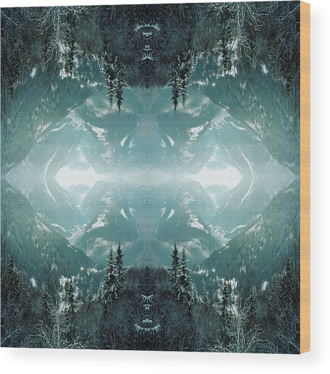 Scenics Wood Print featuring the photograph Kaleidoscope Snowy Trees In Mountains by Silvia Otte