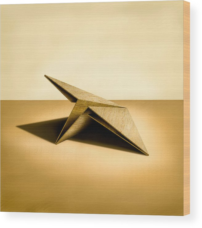Paper Airplane Wood Print featuring the photograph Paper Airplanes of Wood 7 by YoPedro