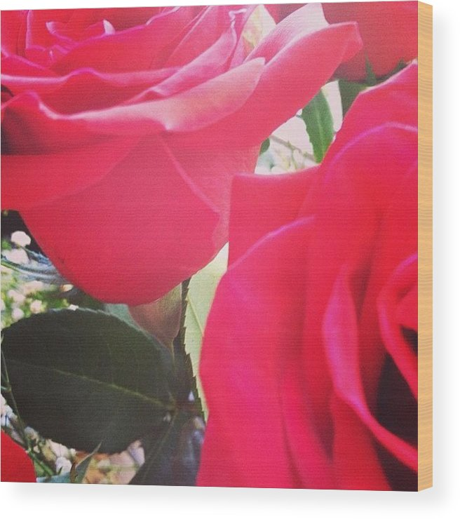 Beautiful Wood Print featuring the photograph #red #rose #roses #flower #nature #new by Amber Campanaro