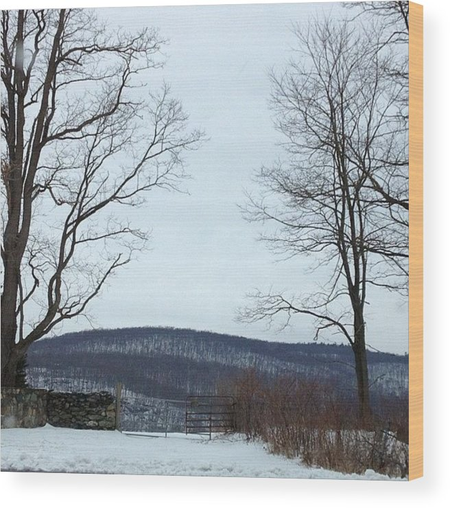 Gate Wood Print featuring the photograph The Gate To No Where #gate #nowhere by Amber Campanaro