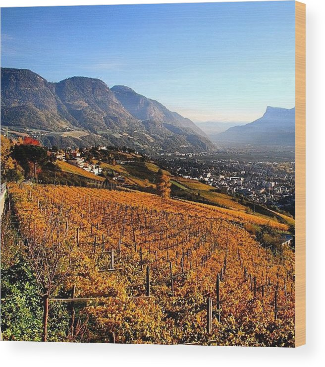 Alps Wood Print featuring the photograph Autumn In South Tyrol by Luisa Azzolini