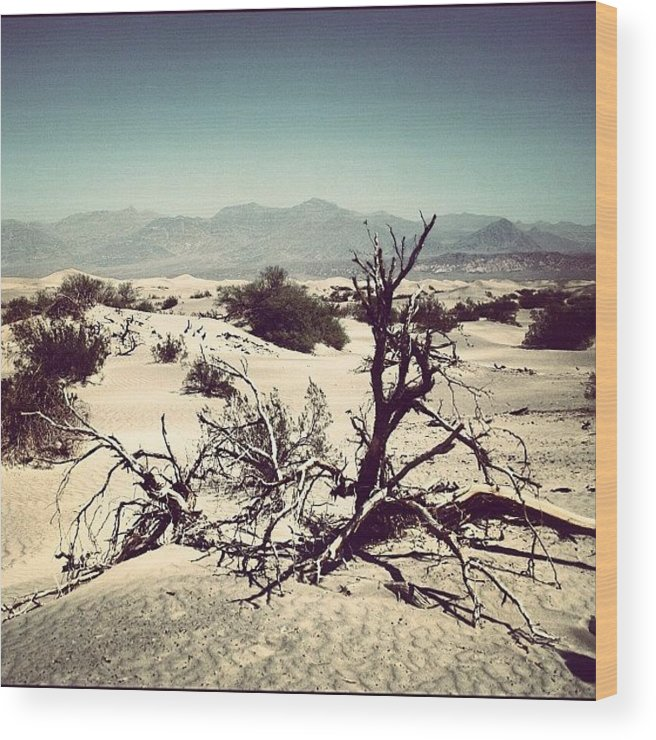 Beautiful Wood Print featuring the photograph Death Valley by Luisa Azzolini