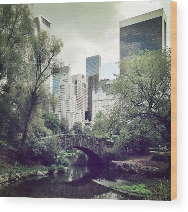 Summer Wood Print featuring the photograph Central Park by Randy Lemoine