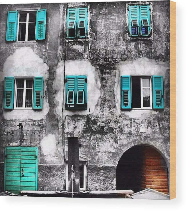Outdoor Wood Print featuring the photograph Predazzo by Luisa Azzolini