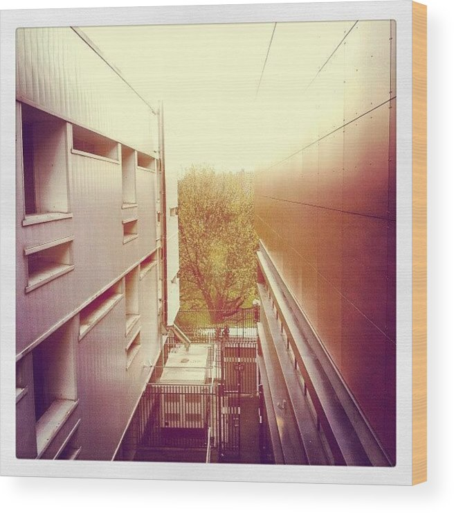 Salford Wood Print featuring the photograph Standing Between The Law School And by Abdelrahman Alawwad