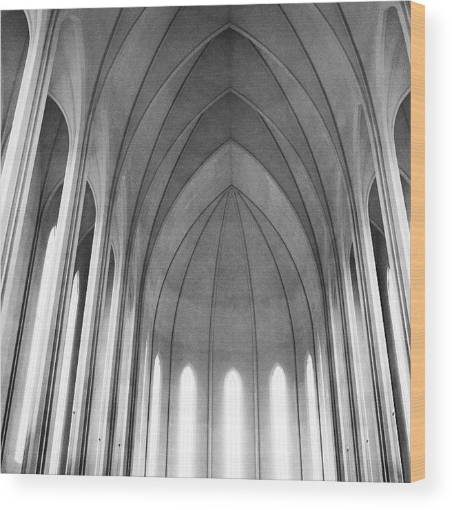 Summer Wood Print featuring the photograph The Halls Of Valhalla by Randy Lemoine