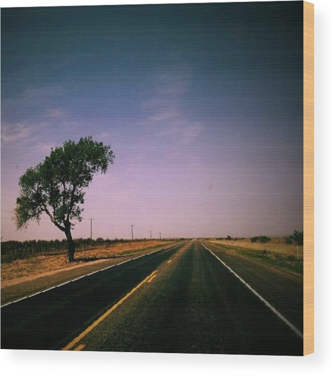Awesome Wood Print featuring the photograph #usa #america #road #tree #sky by Torbjorn Schei