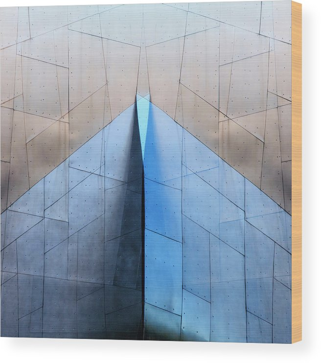 Architecture Wood Print featuring the photograph Architectural Reflections 4619L by Carol Leigh