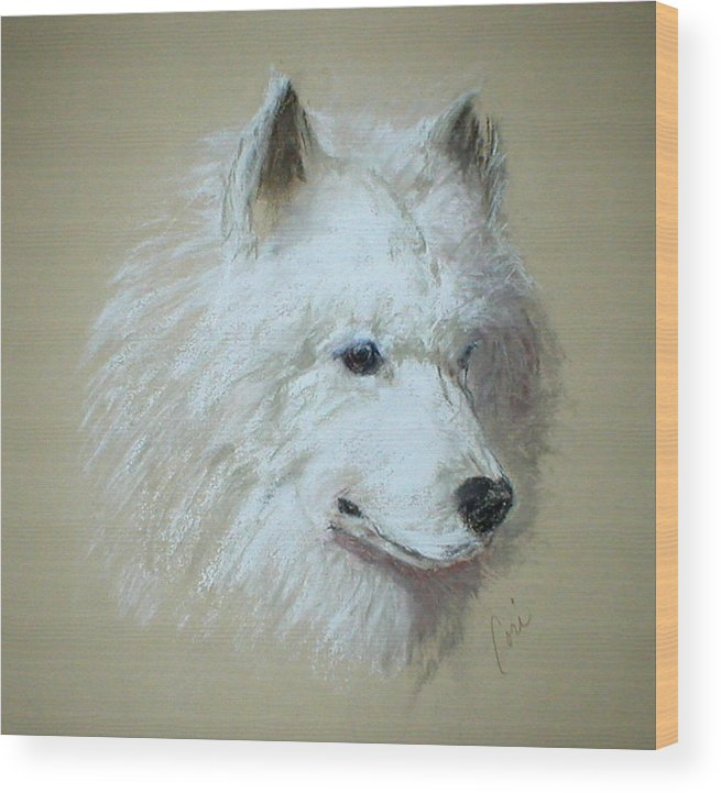 Dog Wood Print featuring the drawing Arctic Serenity by Cori Solomon